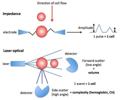 blood flow volume measurement picture 6