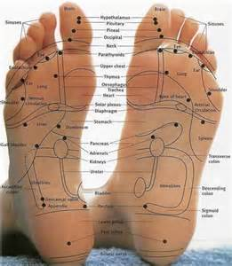 reflexology points libido picture 7