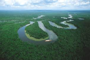 amazon picture 17