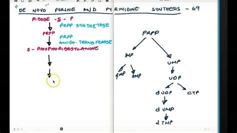 diet pills thyromine picture 6