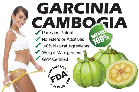 where to buy the medication cambogia garcinia picture 9