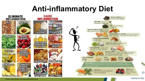gi diet picture 1