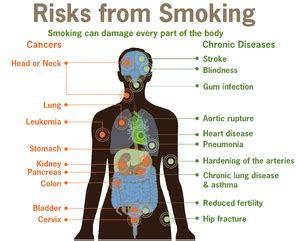how does the body filter tobacco or smoke picture 1