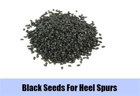 heel spur seed extract picture 3