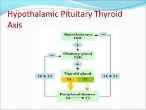 false negative thyroid function test picture 5