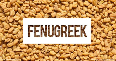 fenugreek seed cause herpes picture 13
