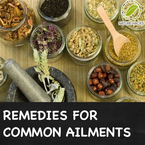 herbal uses for certain ailments picture 3
