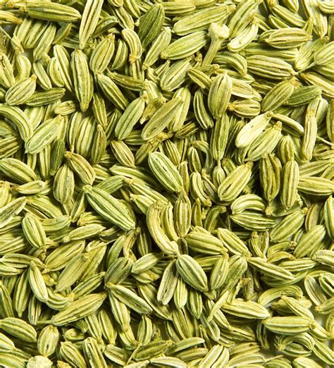fennel seeds weight loss picture 6