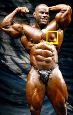 how much muscle can a woman without steroids picture 5