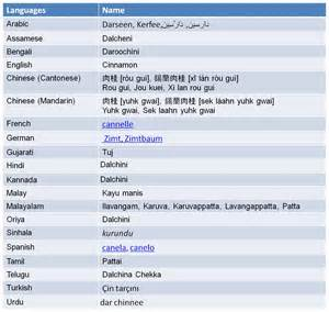 bengali health website picture 3
