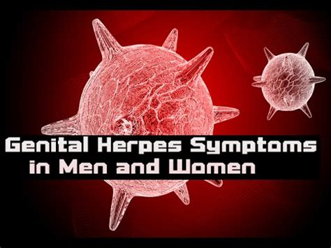 can men and woman with genital herpes have picture 2