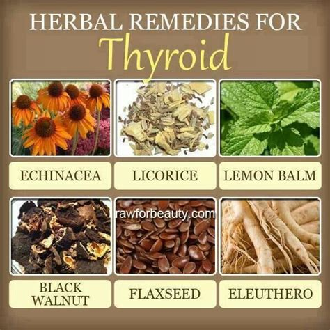 ayurvedic medicine to cure thyroid disease picture 3