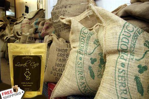 buy green coffee beam eztrak in la pakistan picture 9