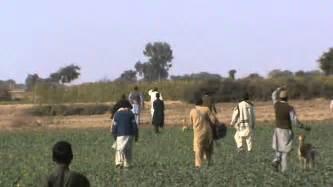 desi punjabi mujra pakistani mujra picture 10