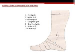 ankle joint picture 9