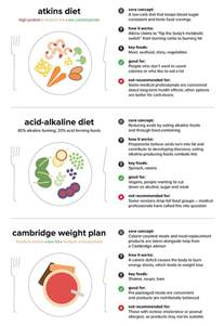 atkin's diet daily schedule picture 11