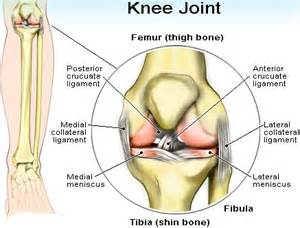 knee joint pain treatment nonsurgical picture 2