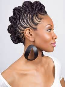 braided hair dos picture 13