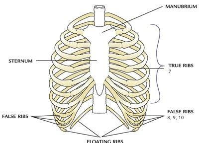 woman body scissor man ribs picture 9