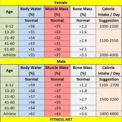 average muscle weight picture 1