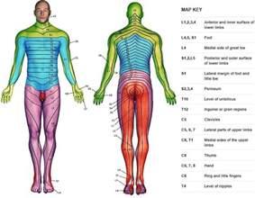 female dermatologist examination picture 3