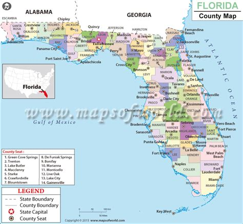 where can i buy nevexen in florida picture 15