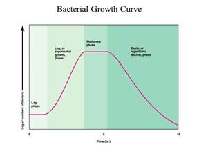 graph bacterial growth picture 6