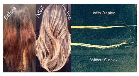 what is oleplex hair picture 6