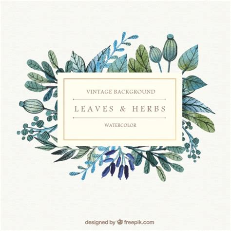 printable herbal clipart picture 11