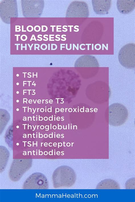 advanced thyroid blood test picture 1