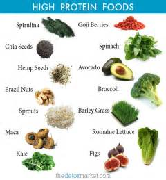 all protein diet picture 13