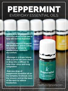 peppermint oil picture 6