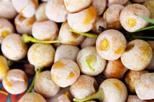 ginkgo nuts picture 10