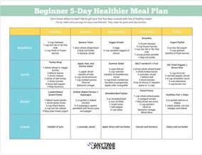 diet plan for beginners picture 10
