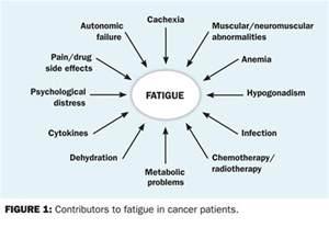 fatigue symptoms muscle picture 17