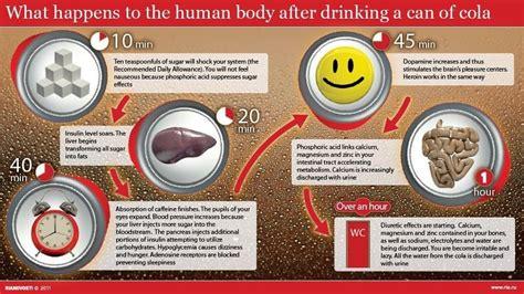 caffeine in diet pepsi picture 19