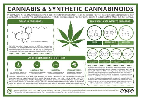 what herbs mimic the chemicals in cannabis picture 3