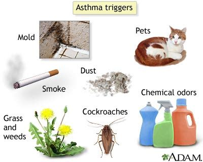 symptoms of allergy to tobacco smoke picture 3