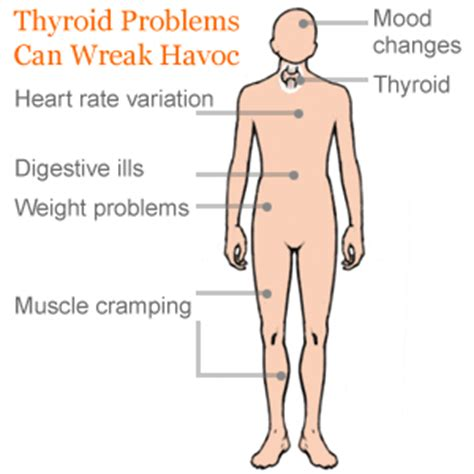 alternative for thyroid problems picture 3