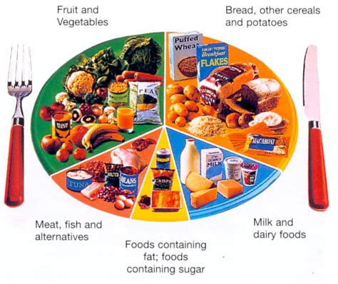 Child low cholesterol diet picture 1