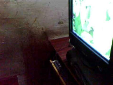 karachi cafe scandal picture 10