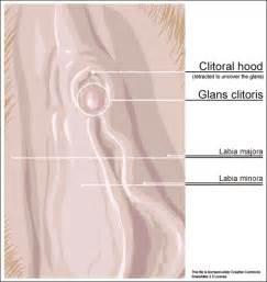 vagina removal cream uses picture 1