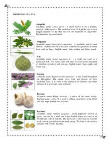 herbal plants and scientific names picture 2