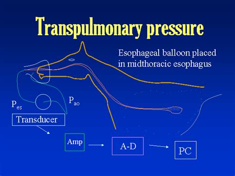 inference of blood pressure readings picture 3