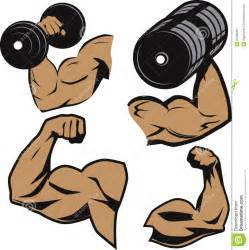 cartoon muscle picture 17