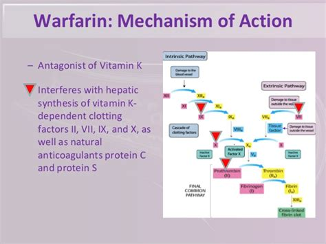 pharmacy having wartrin picture 5