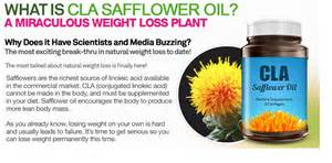 does safflower help in weight loss picture 1