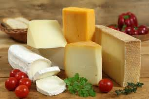 cheese picture 7