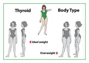 diet for the thyroid shape picture 7