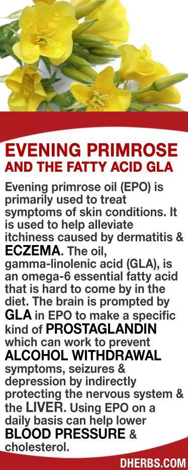 essential oil to fight fatty liver picture 5